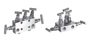 Manifold Valves category image